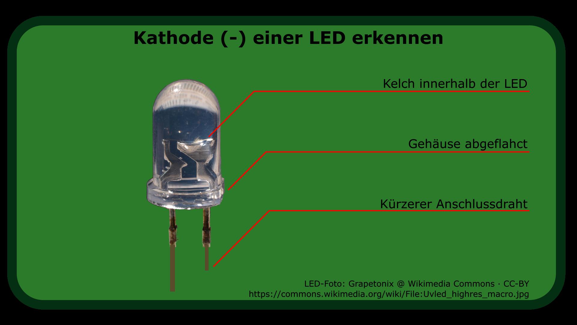 LED: Kathode finden - Adlerweb